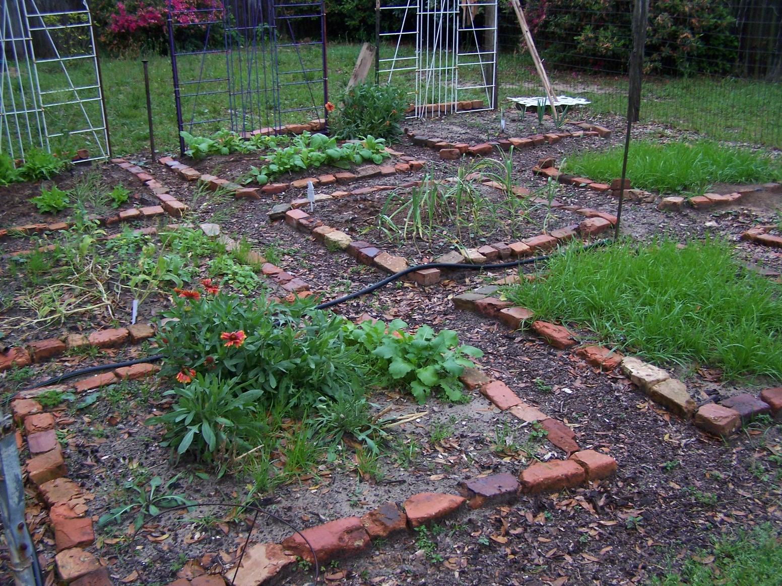 Garden Layout Little Green Bees